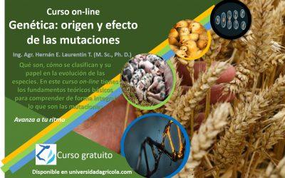 Genética: origen y efecto de las mutaciones